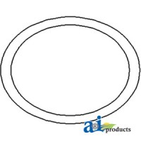 1860838M1 - O-Ring, Rear Axle Housing Carrier Plate